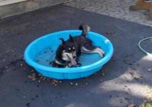 Sascha cooling down