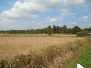 Farmland around the cemetery